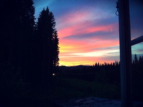 Schweden_Midsommar_Blick_aus_dem_Fenster