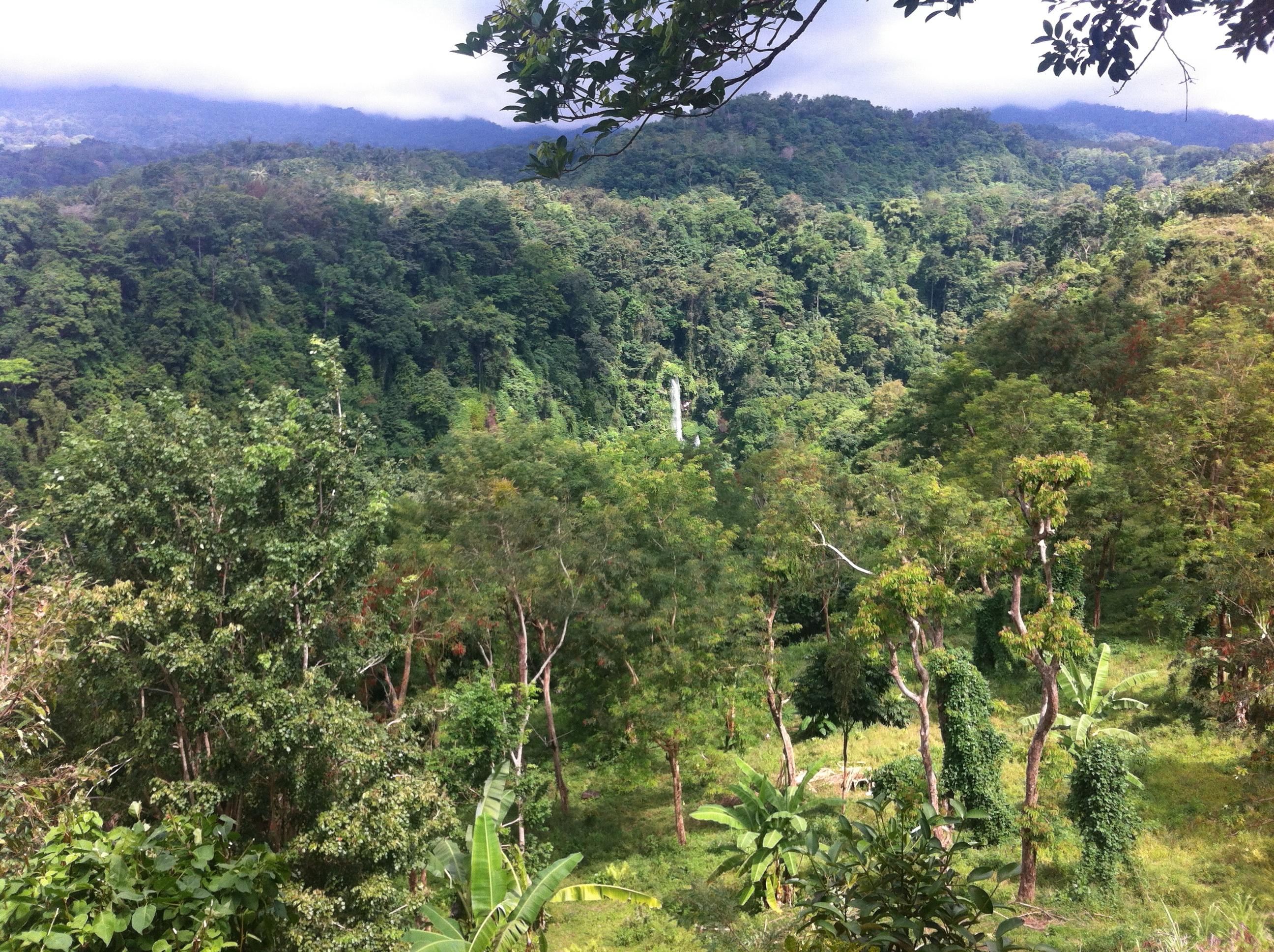 Lombok_Wasserfall_1