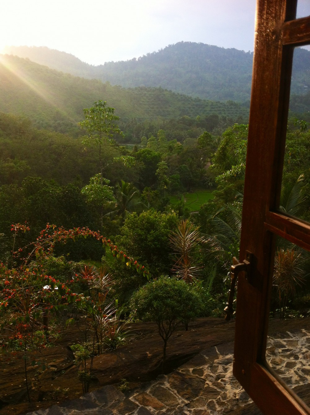 Blick_aus_dem Fenster_Singharaja_Garden_Eco_Lodge