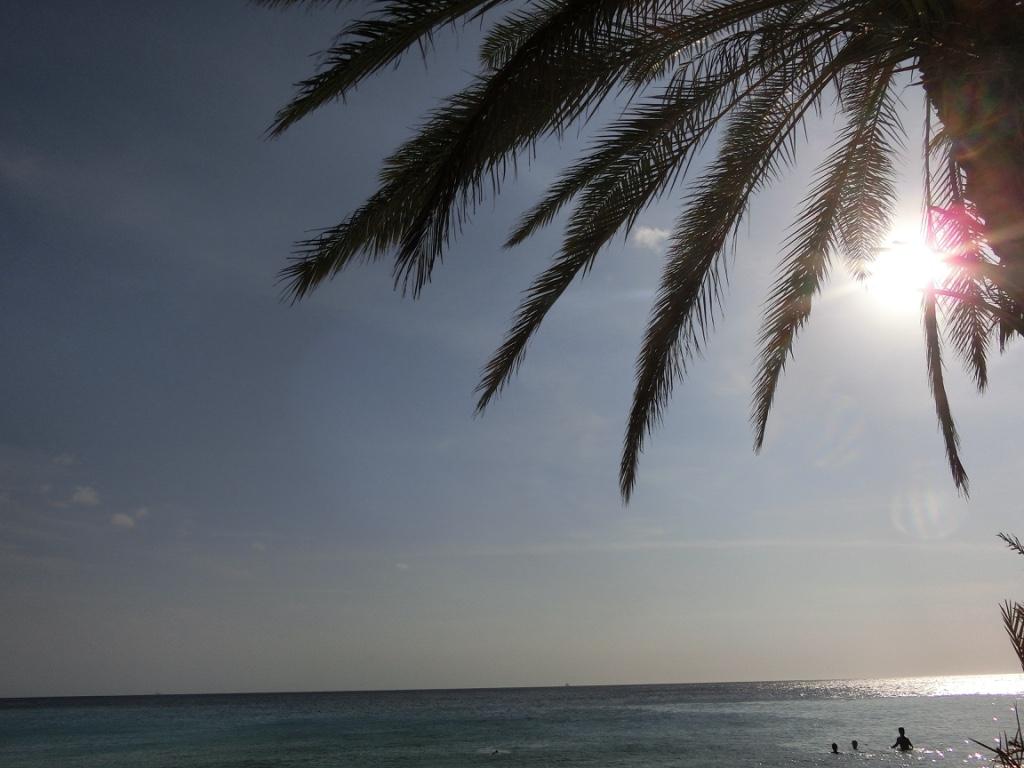 Playa Cas Abou, Curacao