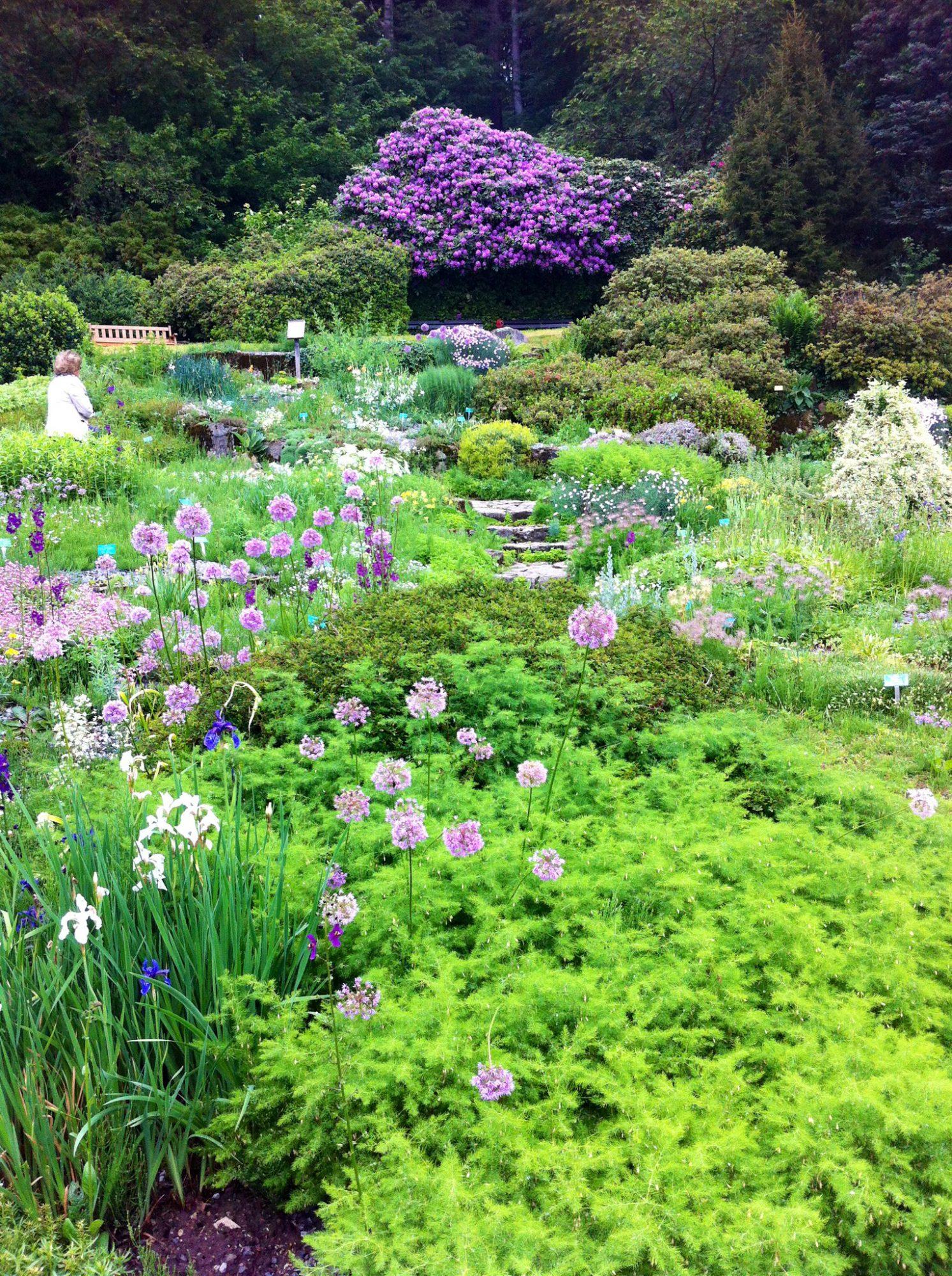 Botanischer Garten Münster Rebeccas Welt