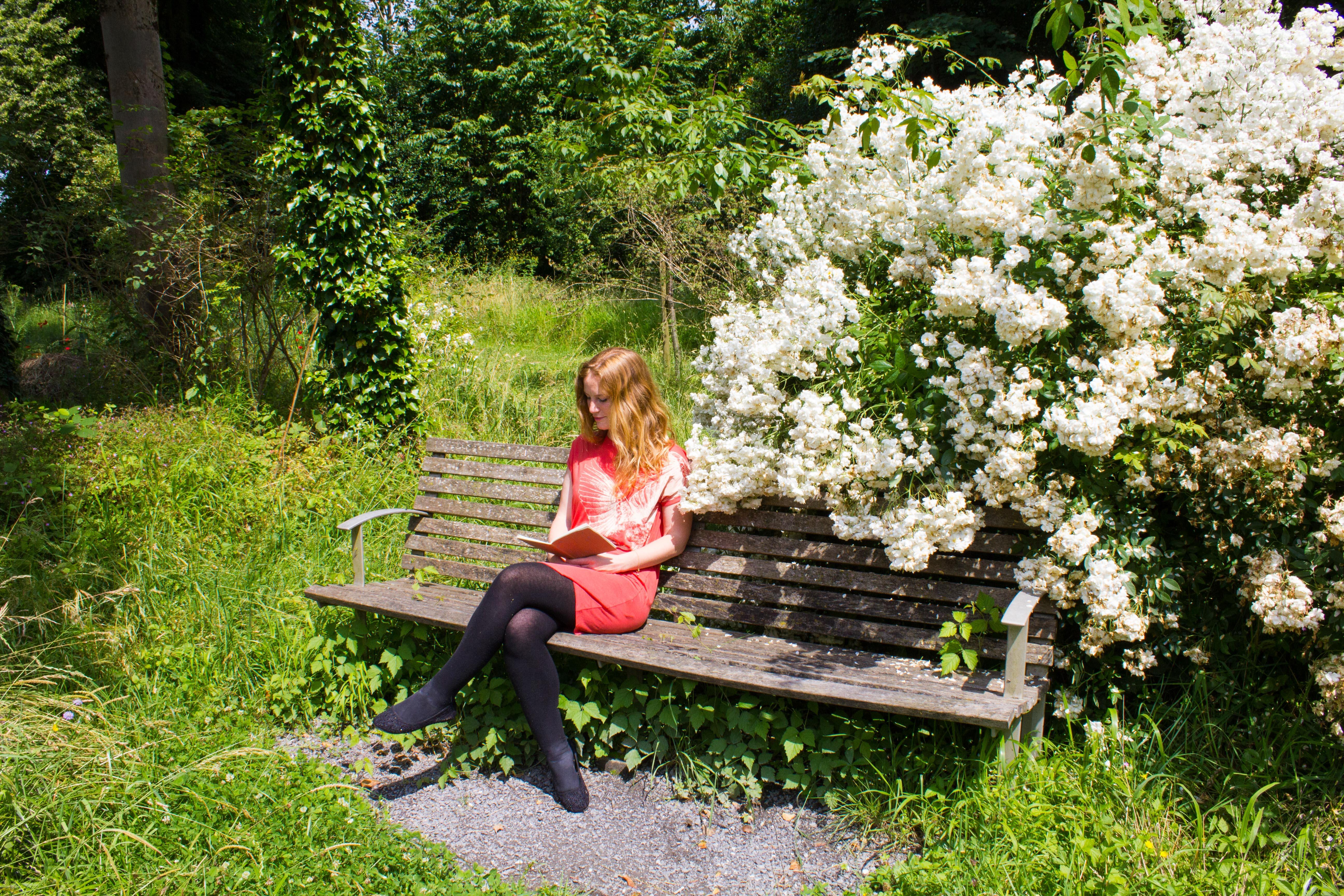 Lauschige Lesorte im Englischen Park