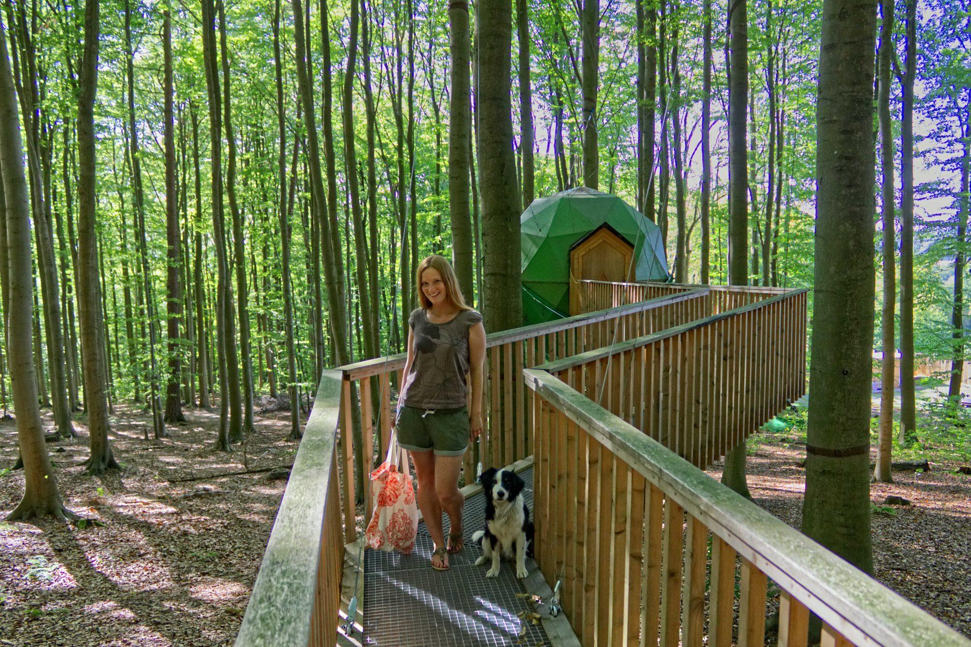 Robins Nest Eine Auszeit Im Baumhaus Rebeccas Welt