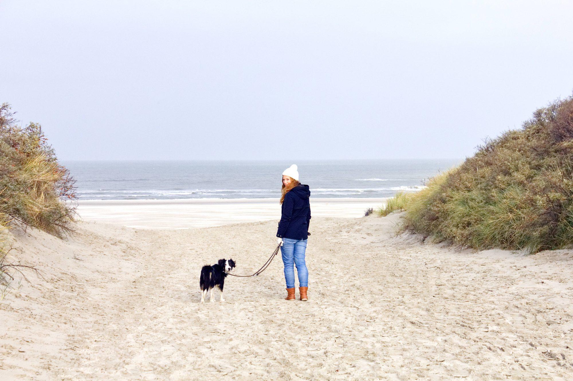 Urlaubsziele Hund